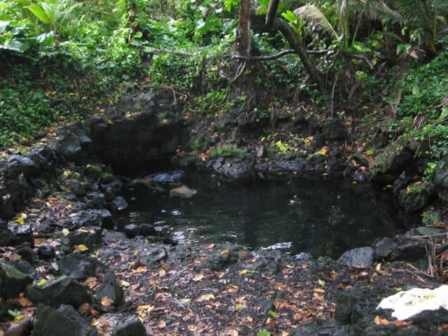 heads under water in the jungle (Pohoiki)