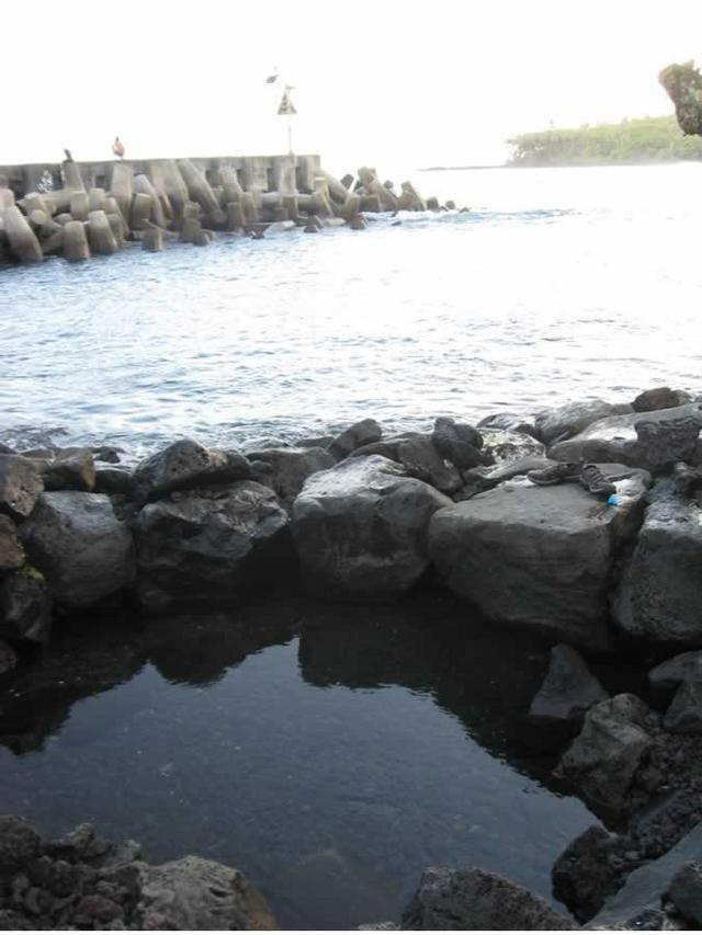 pool by the boat launch (Pohoiki)