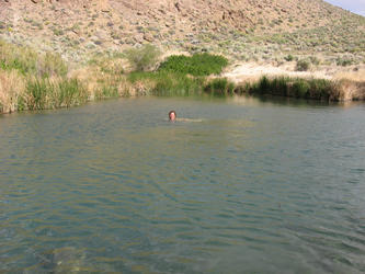 Andy swimming in pond (Owens Valley)