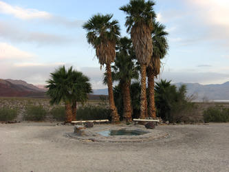 one of the pools (Palm Springs Saline)