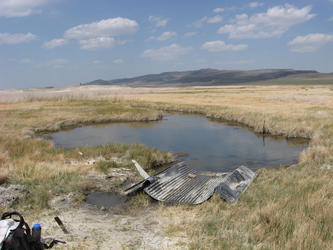 swamps with Fernley wildlife management area in background (Patua)