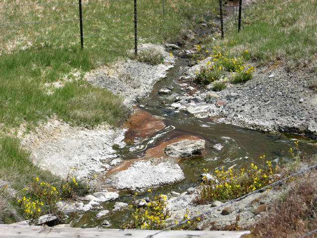source flowing with alge (Dyke)
