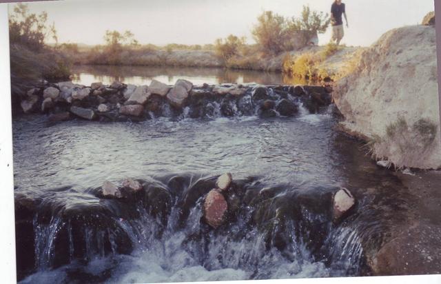 The Dams @(Bog Hot)